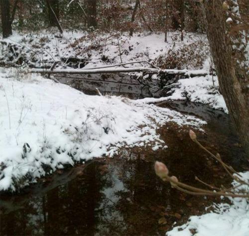creeksnow