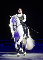 Gala of Royal Horses