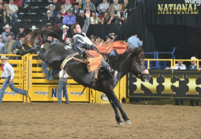52nd Annual AMICUS PRCA Rodeo