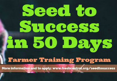Seed to Success in Fifty Days