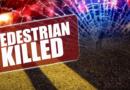 Pedestrian fatality on Bolton Avenue
