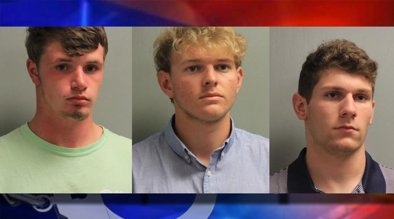 Alexandria Teens Accused of Stealing & Destroying Mail Boxes in Poland Community