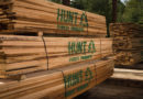 Hunt Forest Products Sawmill Opening Soon