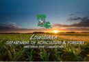 Louisiana Producers to Receive Assistance