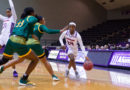 Bonner's big day not enough for Lady Demons