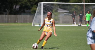 Rey's 10 saves not enough as LSUA falls in conference opener