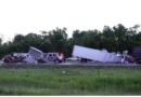 Crash on I-10 last night leaves several horses dead