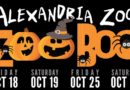 Scare Free Halloween Activities at Zoo Boo