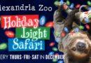 Holiday Light Safari at the Alexandria Zoo