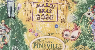 City of Pineville, Night of Lights Parade Feb. 14th
