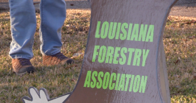 Louisiana Foresters give seedlings on Arbor Day